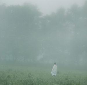 森ゆに 「山の朝霧」